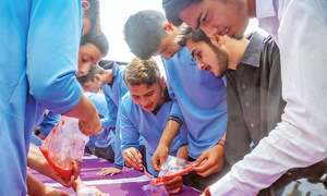 Over 1,000 students take part in DNA extraction at Swat festival