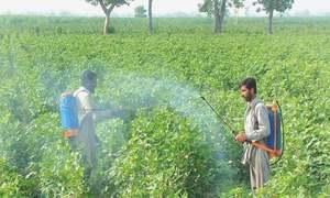 Environmental impact of pesticide overuse