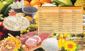 High hopes for sustaining growth in food exports