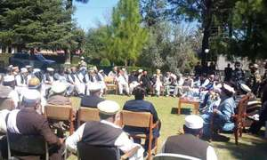 Tribal elders, political leaders vow to maintain peace in Bajaur