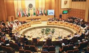 Arab League calls for international probe into Israeli 'crimes'