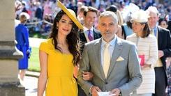 Who really looked like royalty at the Royal Wedding?