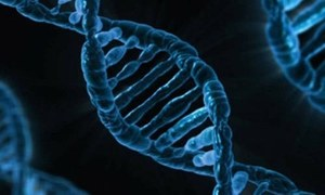 Estonia to map DNA of its population