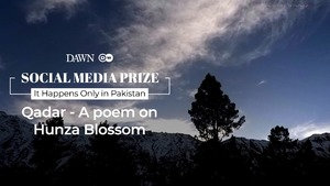 Social Media Contest Prize: 'Qadar - A Poem on Hunza Blossom' by Hassan Tanveer