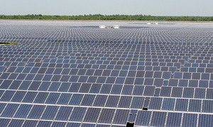 EU looks into extending import controls on Chinese solar panels