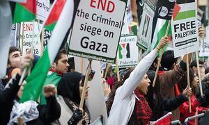 اسرائیل مخالف مہم چلانے والی یہودی کارکن کی یروشلم داخلے پر پابندی