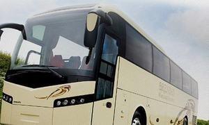 PHC asks NAB to investigate 'shady and shaky' Peshawar bus project
