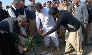 خان صاحب، بس 10 ارب درخت لگانے کا وعدہ مت بھولیے گا