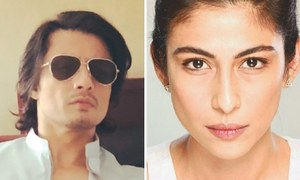 Meesha Shafi appeals to LHC against Punjab governor's dismissal of complaint against Ali Zafar