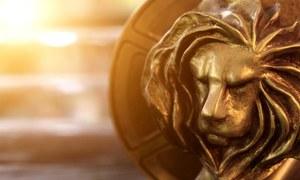 How to win international awards?