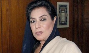 ڈاکٹر فہمیدہ مرزا کی جیت دوبارہ گنتی میں بھی برقرار