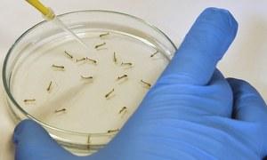 حکومتی منصوبوں کے علاوہ وہ اقدام جن سے قدرتی وباؤں کو روکا جاسکے