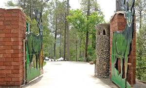 The seldom remembered expansive, scenic zoo in Murree
