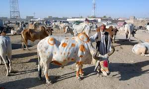 Eid economy takes an upturn