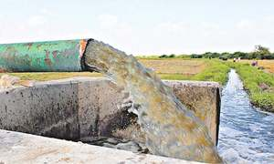 Agricultural pollutants worsen water crisis in Sindh
