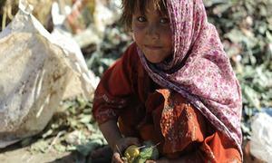 'پاکستان میں 40 فیصد غذا کو ضائع کردیا جاتا ہے'