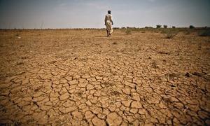 بارشوں میں کمی، ملک کے جنوبی حصے خشک سالی کی لپیٹ میں، پی ایم ڈی