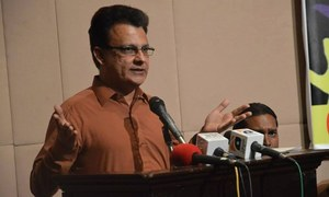 PM cautioned against offering citizenship to 'aliens'