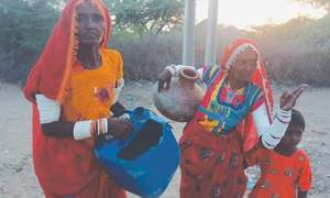 Drought-hit Thar awaits emergency aid for a month