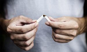 سگریٹ کی پیداوار میں نمایاں اضافہ