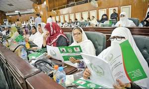 Uplift schemes get just Rs700m in Peshawar's Rs11bn budget