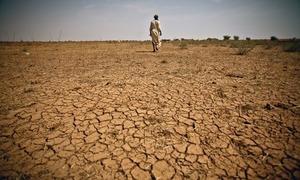 بلوچستان میں قحط سالی سے خواتین و بچے غذائی قلت کا شکار
