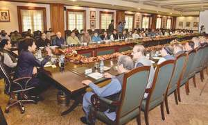IMF help needed to get out of critical phase: PM