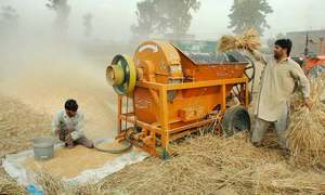 Committee sets lower wheat target