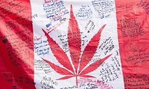 Canada legalises marijuana for recreational use