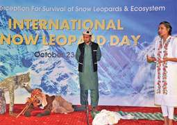 Call for involving indigenous people in snow leopard conservation efforts