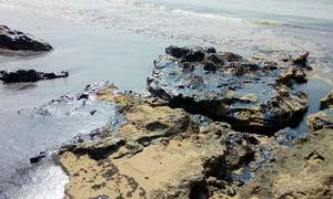 EPA halts operations of Byco after oil spill ruins Mubarak Village-Churna Island coastal belt