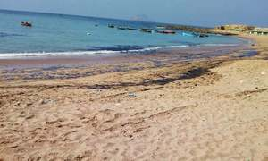 تارکول سے ساحل آلودہ ہونے پر بائیکو کو آپریشن سے روک دیا گیا