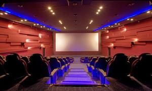 پاکستانی فلم انڈسٹری کی فلاپ سوچ