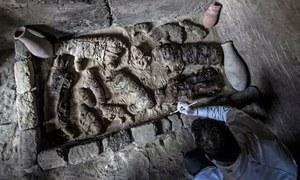 6 ہزار سال قدیم حنوط شدہ بلیاں اور بھنورے دریافت