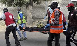 Boko Haram kills 16 in Nigeria: militia