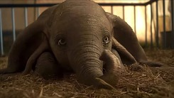 Colin Farrell singlehandedly helps Dumbo in the live-action flick's trailer
