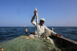 Sindh Assembly asks Centre to abolish deep-sea fishing policy