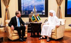 Foreign Minister Qureshi calls on UAE counterpart in Abu Dhabi