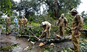 Cyclone kills 33 in India with thousands in relief camps