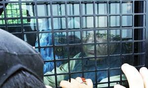 'Flawed' defence may put Nawaz behind bars: Aitzaz