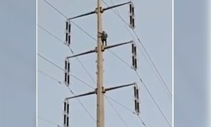 Karachi man booked for attempted suicide after climbing electric pole in 'protest'
