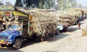 Millers challenge sugar cane price notification in court