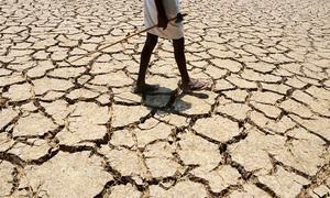 بلوچستان میں 5 لاکھ سے زائد افراد کو قحط جیسی صورتحال کا سامنا