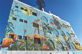 Mural by Italian artist spruces up Keamari building