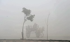 Thick fog blankets Punjab cities