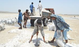 It's time to export more than a pinch of salt