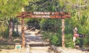 Adventur: Hiking on Margalla Hills