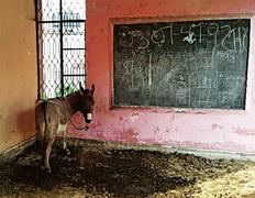 A public school without teachers for last six years