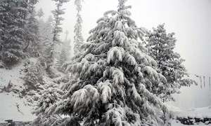 کوہستان: برف میں پھنسے مزدوروں کو بحفاظت نکال لیا گیا