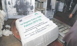 Pakistan certifies first organic cotton bale